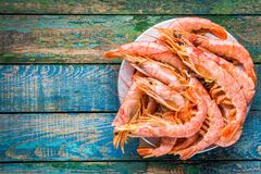 Fresh raw shrimps in a bowl Royalty Free Stock Photography