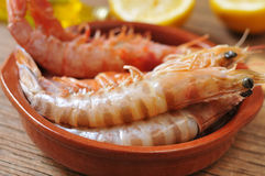 Fresh raw shrimps. Closeup of a earthenware bowl with some fresh raw shrimps on a rustic wooden table Stock Photos
