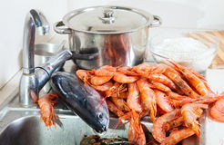 Fresh raw shrimps and fish Stock Images