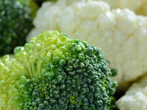 Fresh raw sliced broccoli pieces closeup segments Stock Photography