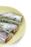 Fresh raw slices of hake fish with rosemary branches on the plate with copy space.  Stock Photos