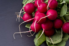 Fresh raw spicy radish. On slate background Royalty Free Stock Photo