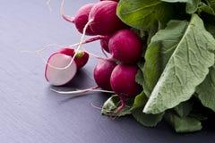 Fresh raw spicy radish Royalty Free Stock Photos