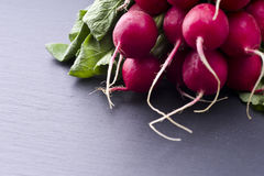 Fresh raw spicy radish. On slate background Stock Image