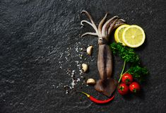 Fresh raw squid seafood herbs and spices with lemon tomato garlic stock image