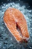 Fresh Raw steak salmon on ice. Fresh Raw steak salmon on ice Stock Images
