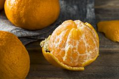 Fresh Raw Sumo Oranges Royalty Free Stock Image