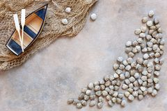 Fresh raw Surf chamelea gallina, fishing boat with oars and fishnet. Top view, close up on sand concrete background.  stock photo