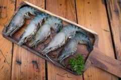 Fresh raw Tiger Prawn on wooden plate. On the table Stock Image