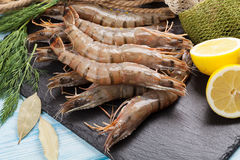 Fresh raw tiger prawns and fishing equipment. On wooden table Royalty Free Stock Photos