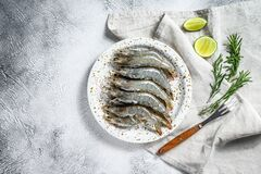 Free Fresh Raw Tiger Prawns, Shrimps And Spices On A White Plate. Gray Background. Top View. Copy Space Stock Photography - 173513372
