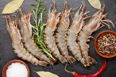 Fresh raw tiger prawns and spices. On black stone plate. Top view Stock Image