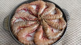 Fresh raw tiger shrimp with ice on black stew. Deliciously Royalty Free Stock Image