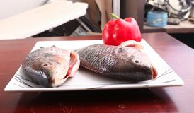 Fresh Raw Tilapia Fish side view. Raw fresh sea fish on modern dish on wooden table Royalty Free Stock Image