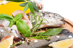 Fresh raw of trout  fillets. Close up fillet of fresh raw fish with herbs and spices on a kitchen board, soft focus Stock Image