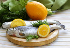 Fresh raw trout fish. On the kitchen board Royalty Free Stock Photography