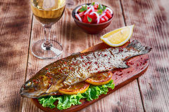Fresh raw trout whole. On ice Stock Images