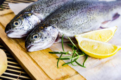 Fresh raw trout on wooden cutting board Stock Photography