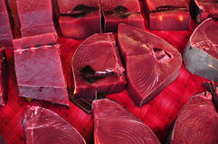 Fresh Raw Tuna (Thunnus albacares) Stock Image