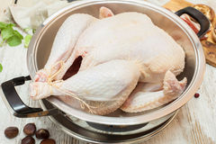 Fresh raw turkey in a roasting pan Stock Image