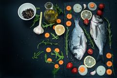 Fresh raw uncooked dorado fish with lemon, herbs, oil, vegetables and spices on black backdrop, top view. Fresh raw uncooked dorado fish with lemon, herbs, oil Stock Image