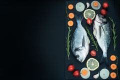 Fresh raw uncooked dorado fish with lemon, herbs, oil, vegetables and spices on black backdrop, top view. Fresh raw uncooked dorado fish with lemon, herbs, oil Stock Photography