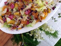 Fresh raw vegetable salad on platter with decorative greens. At an outdoor buffet, a beautiful salad served including yellow and chioggia beets, apples, frisée Stock Photos