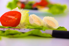 Fresh raw vegetable salad with tomatoes and green lettuce on wooden plate isolated over white background.  Royalty Free Stock Photos