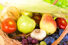 Fresh raw vegetables. Basket with colorful vegetables and fruits Royalty Free Stock Photo
