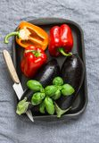 Fresh raw vegetables for grilling - eggplant and sweet pepper. Cooking ingredients. Top view Stock Photography