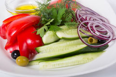 Fresh raw vegetables. Fresh raw sliced vegetables and herbs on white plate Royalty Free Stock Photo