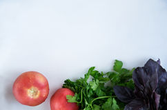 Fresh and raw vegetables and. Vitamin food. And vegetarian food. Backround white. Concept Helthy food Royalty Free Stock Photo