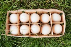 Fresh raw white chicken eggs in a wooden box on green grass. Ten chicken eggs. A dozen chicken eggs Royalty Free Stock Photo