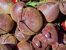 Macro of whole beetroot at a market royalty free stock images