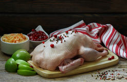 Fresh raw whole duck ready for cooking with apples, cranberries and cabbage Stock Photos