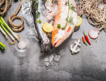 Fresh raw whole fish with ingredients for tasty and healthy cooking on concrete stone background with ice cubes, top view, border. Stock Image