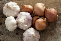 Fresh raw whole garlic bulbs and onions Stock Photography
