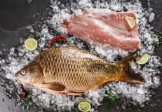 Fresh raw whole mirror carp and fish fillet with spices, lemon on ice over dark stone background. Creative layout made of fish stock photo