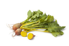 Fresh raw yellow beets Royalty Free Stock Photo