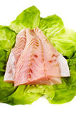 Fresh raw zander fillet Stock Images