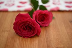 Close up flower photography image of fresh red roses on a natural rustic wood background with blur background for Valentines Day. Fresh real red rose flowers and Stock Images