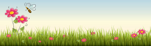 Fresh realistic green grass with red flowers - vector illustration Stock Image