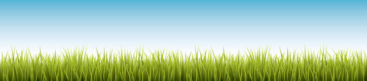 Fresh realistic green grass - vector illustration Royalty Free Stock Photos
