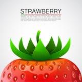 Fresh realistic strawberry background. Stock Photo
