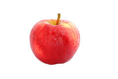 Fresh Red Apple Stock Photography