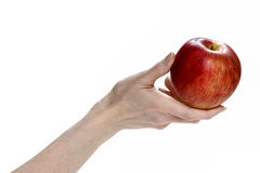 Fresh red apple in beautiful hand isolated on white background. Royalty Free Stock Photography