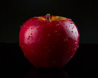 Red, wet apple on black Royalty Free Stock Photos