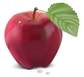Fresh red apple with green leaf.  Royalty Free Stock Photography
