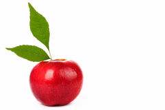 Fresh red apple with green leaf isolated on white Stock Images