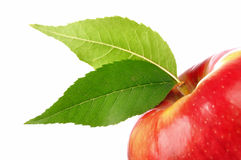 Fresh red apple with green leaf isolated on white Stock Photo